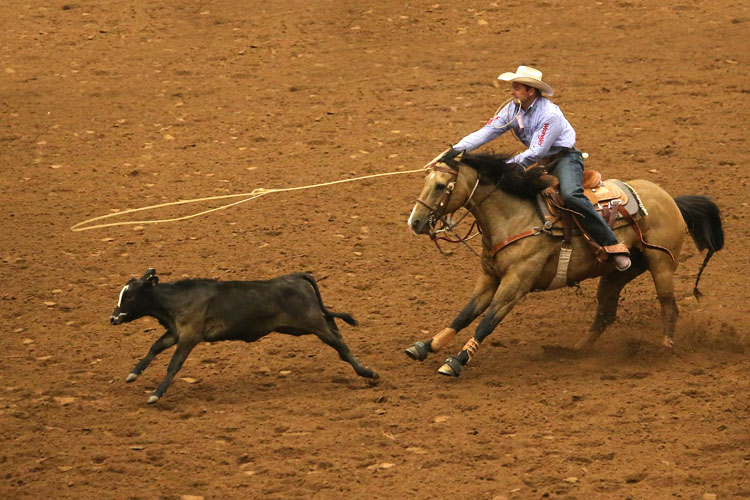 HOT-Fair-Rodeo-10-06-13-70