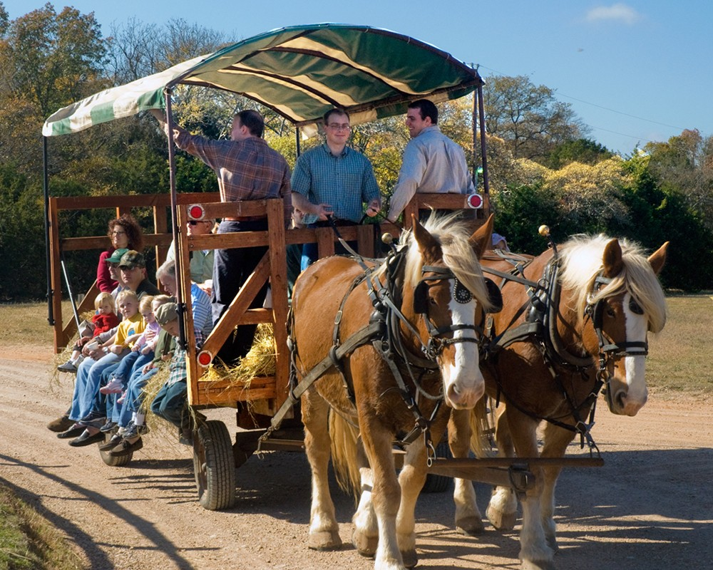 Homestead Heritage Fall Fair Waco The Heart Of Texas