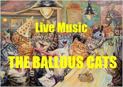 Ballous Cats Live!